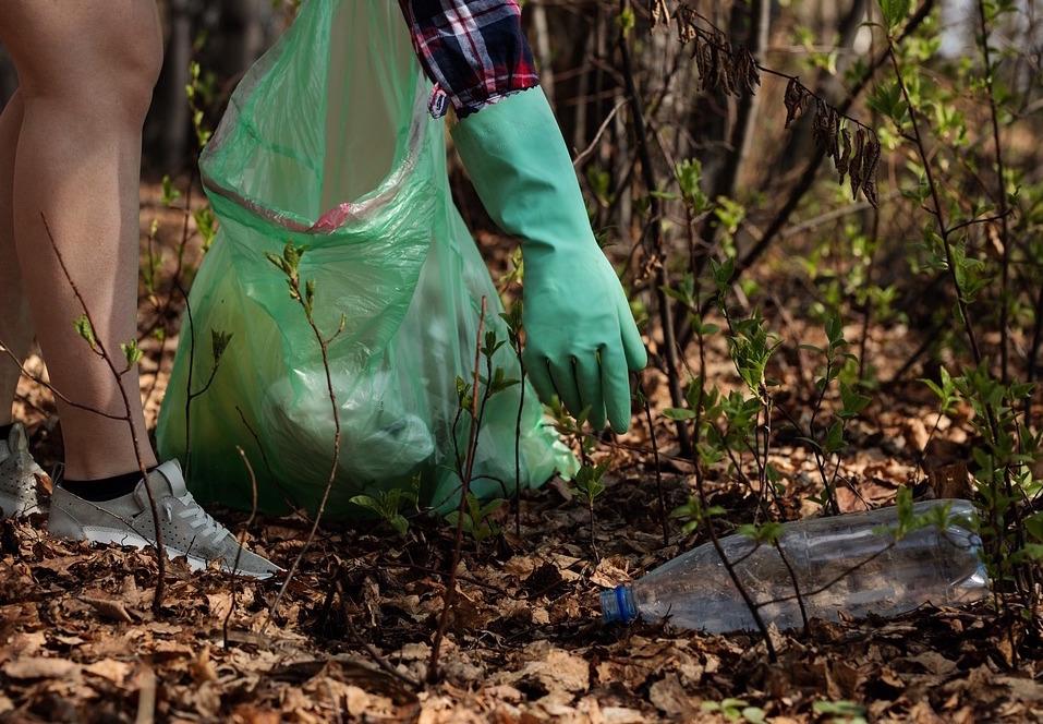 Plastica in Padule: l'impegno del Consorzio Basso Valdarno