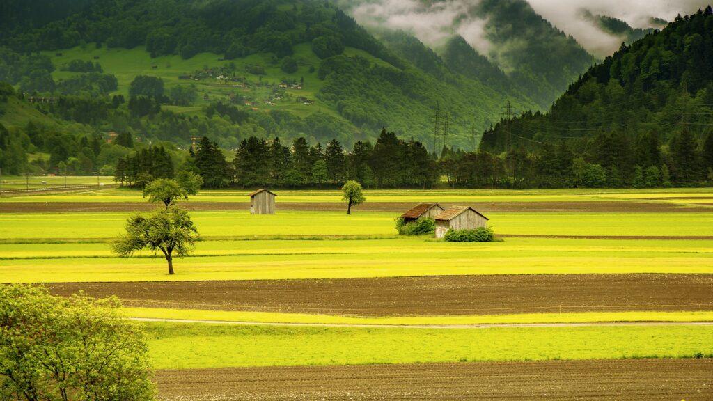 contributi-aziende-agricole