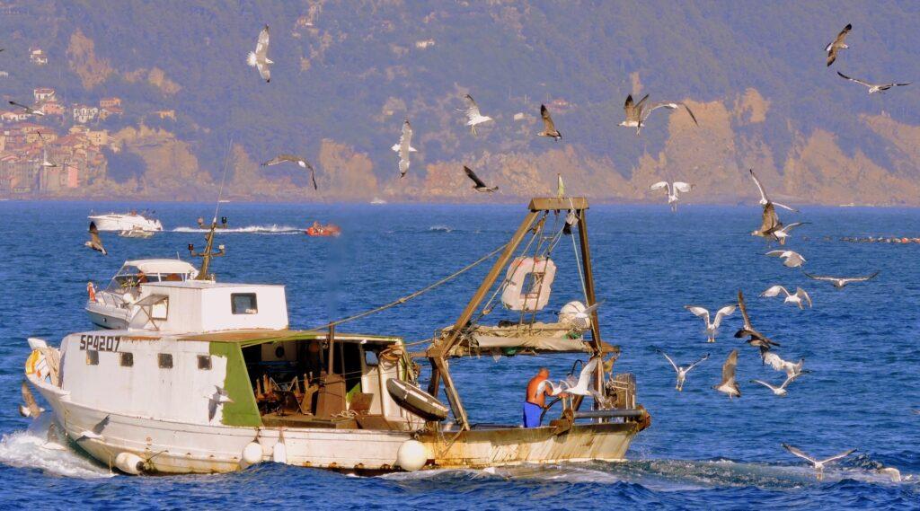 pesca a rischio
